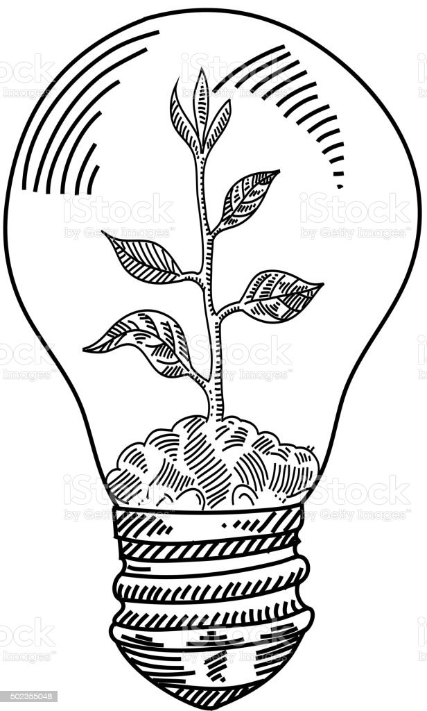 Light Bulb With Plant Drawing Stock Vector Art & More
