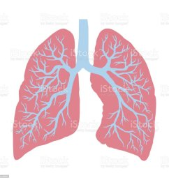 lung cancer diagram in detail illustration royalty free lung cancer diagram in detail illustration stock [ 1024 x 1024 Pixel ]