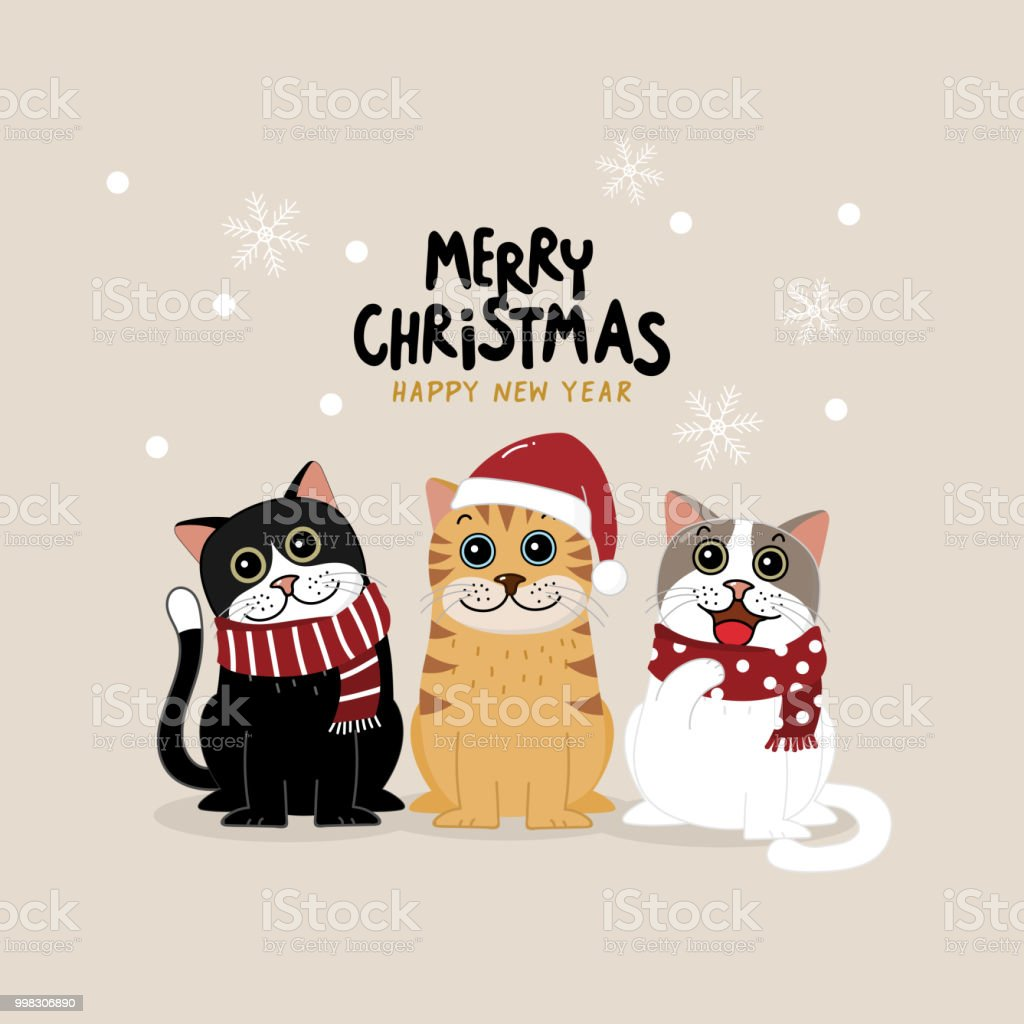 Merry Christmas Greeting Card With Cute Cat Wear Winter
