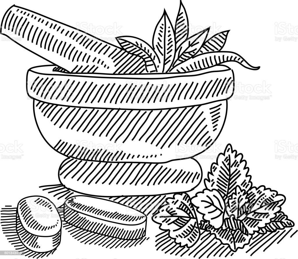 Mortar With Herbal Medicine Drawing Stock Vector Art