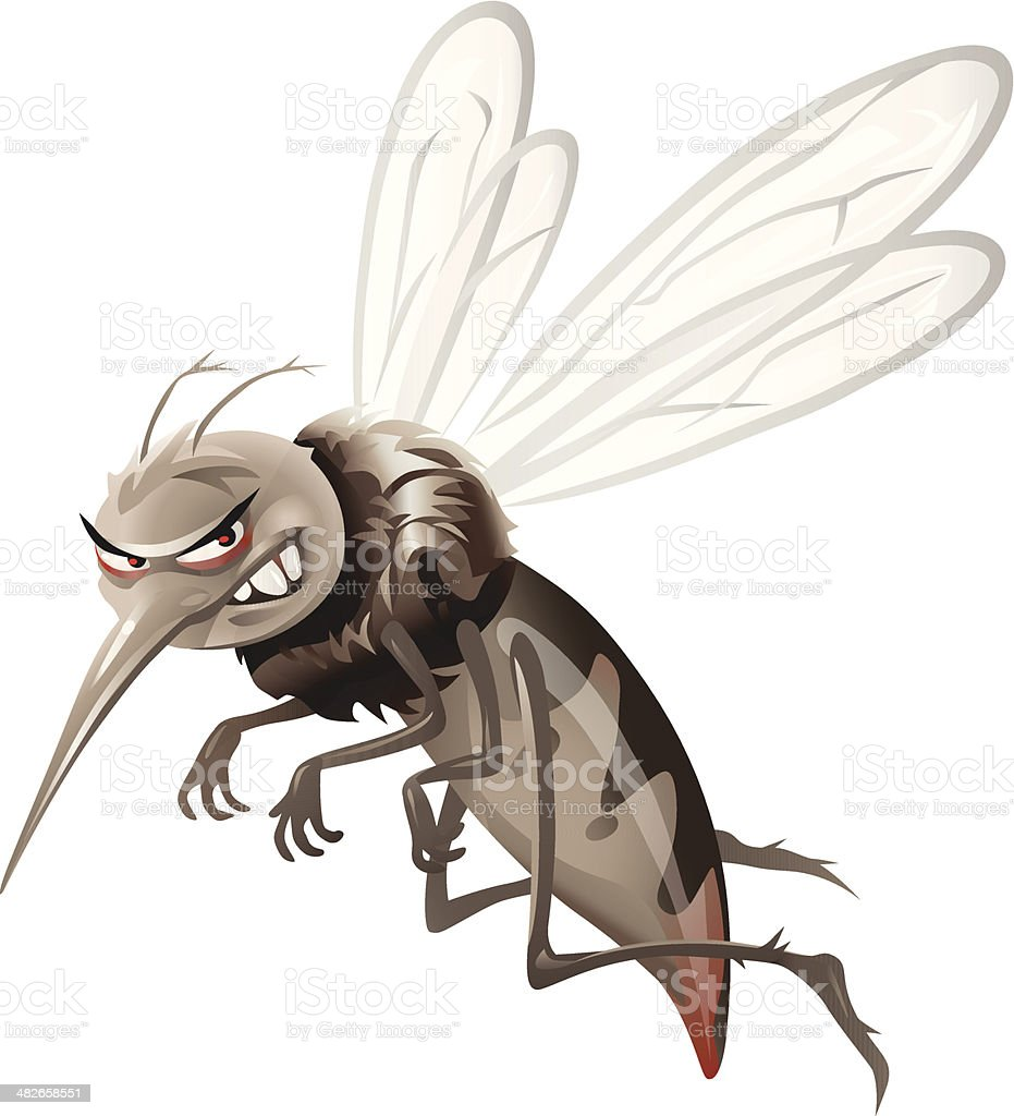 royalty free mosquito clip art