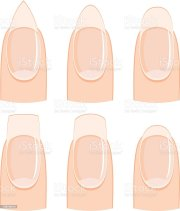 nail shapes stock vector art &