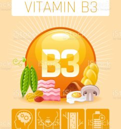 nicotinic acid vitamin b3 rich food icons healthy eating flat icon set text letter [ 830 x 1024 Pixel ]