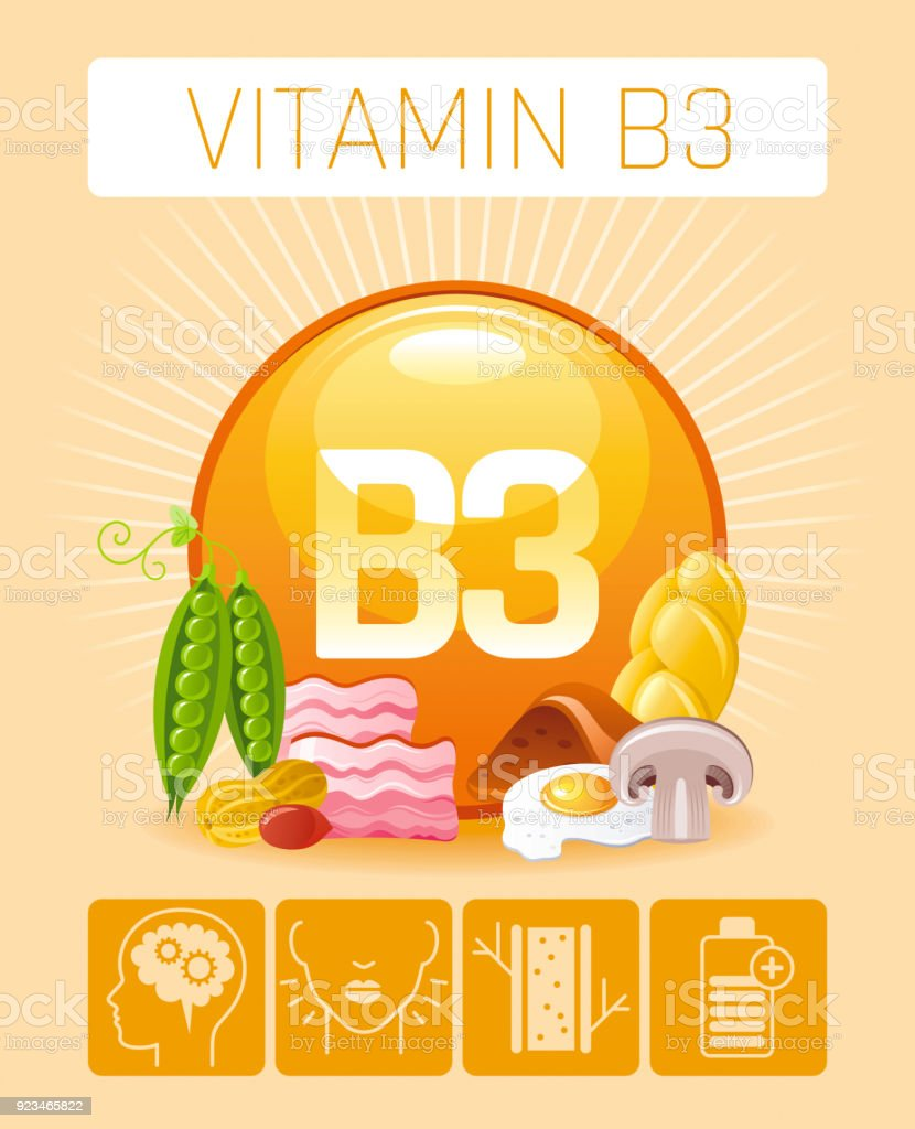 medium resolution of nicotinic acid vitamin b3 rich food icons healthy eating flat icon set text letter