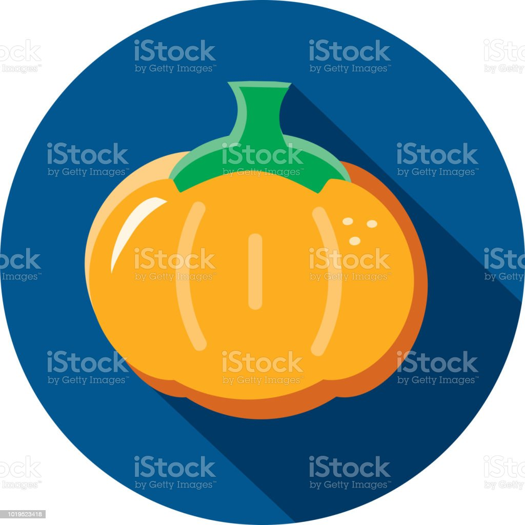 hight resolution of orange pumpkin vegetables flat design themed icon with shadow illustration