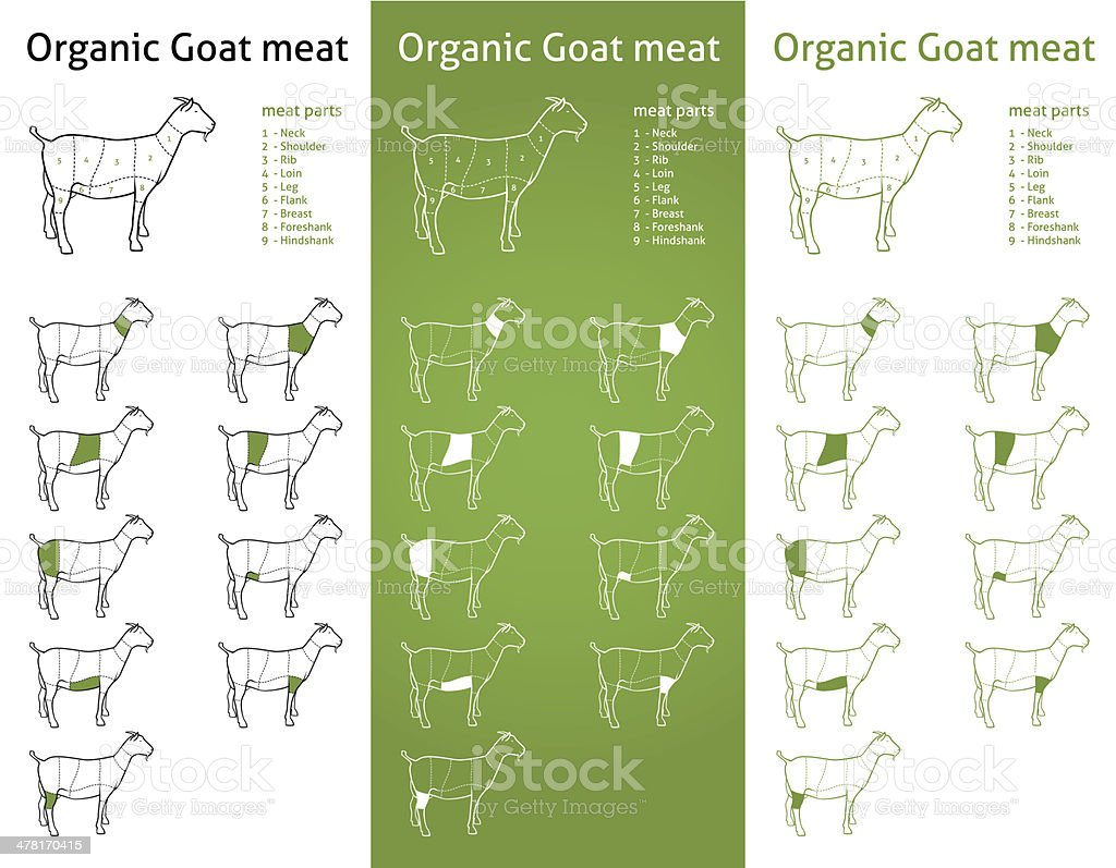 hight resolution of organic goat meat cuts diagram set illustration