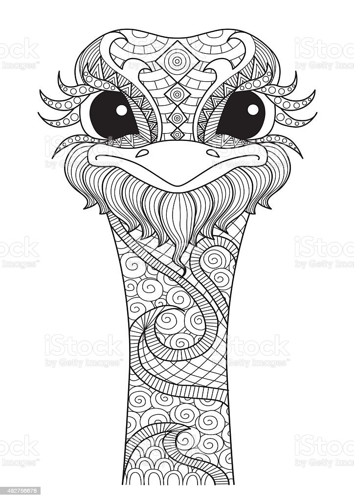 Ostrich Stock Vector Art & More Images of 2015 492756678
