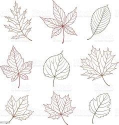 outline leaf vector elements autumn cut illustration beauty vectors celebration nature event