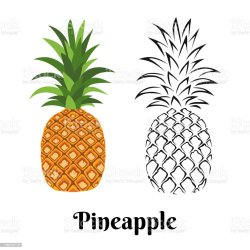 Pineapple Isolated On White Background Color Illustration And Black And White Outline Vector Image Of Exotic Tropical Fruit In Cartoon Flat Simple Style Stock Illustration Download Image Now iStock