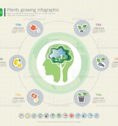 plants growing timeline infographic with icons set save the world and go green concept or green business ecology friendly diagram template  [ 1024 x 885 Pixel ]