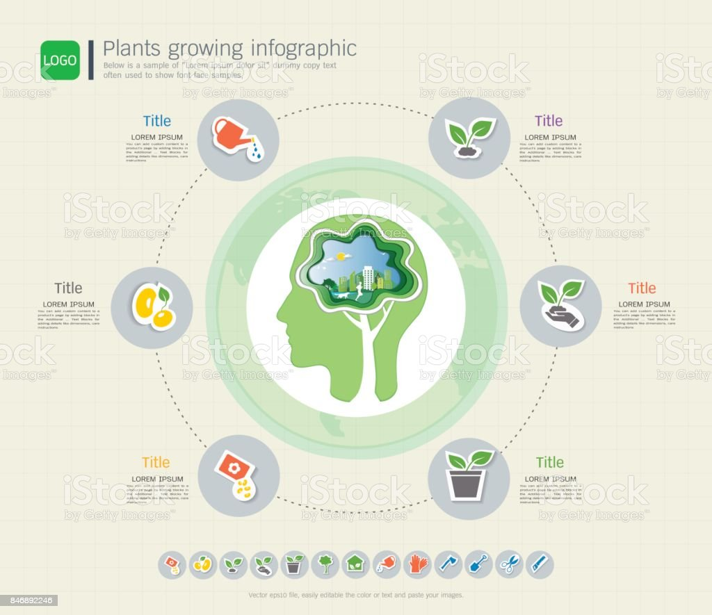 hight resolution of plants growing timeline infographic with icons set save the world and go green concept or green business ecology friendly diagram template