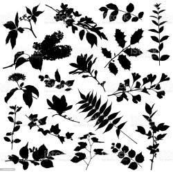 Silhouette Leaves Clipart Black And White