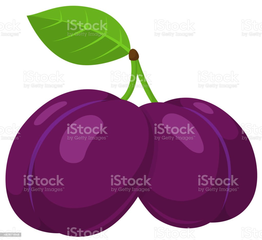 dried plum clip art vector