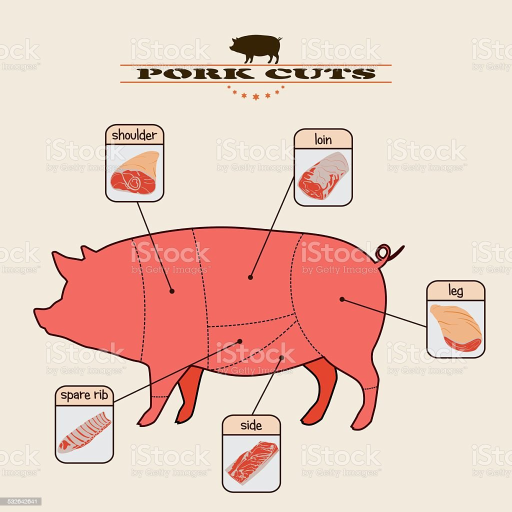 hight resolution of pork cuts royalty free pork cuts stock vector art amp
