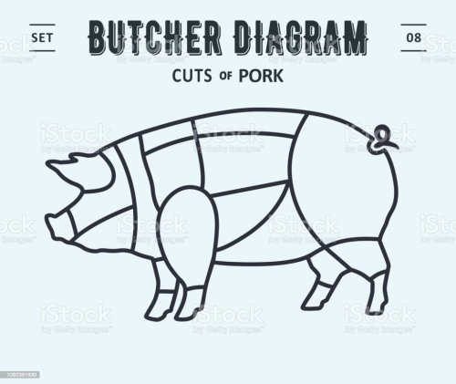 small resolution of poster butcher diagram and scheme pork royalty free poster butcher diagram and scheme