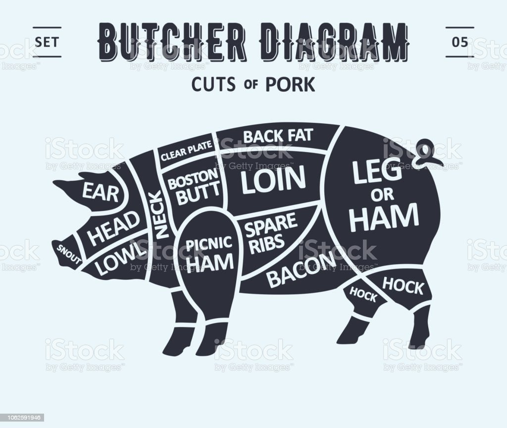 hight resolution of poster butcher diagram and scheme pork royalty free poster butcher diagram and scheme