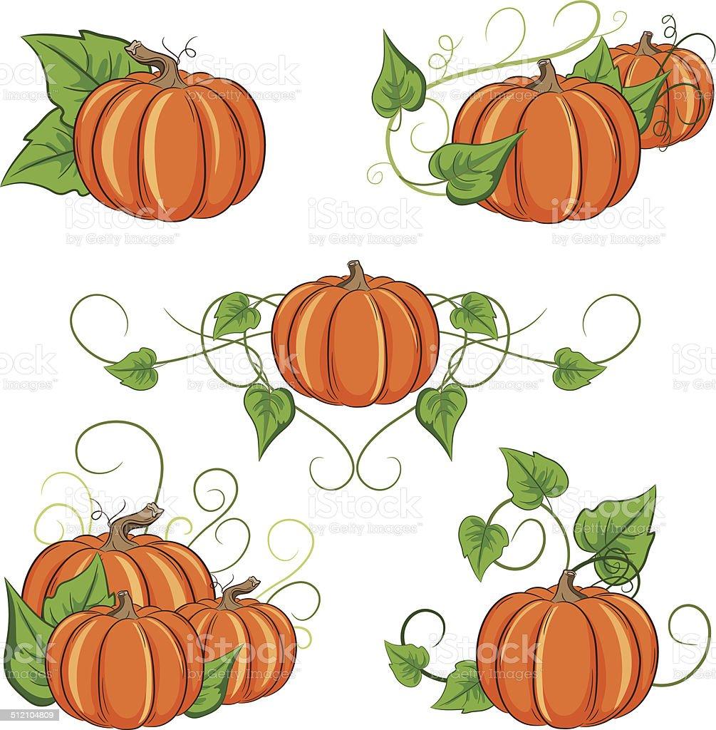 royalty free pumpkin vine clip