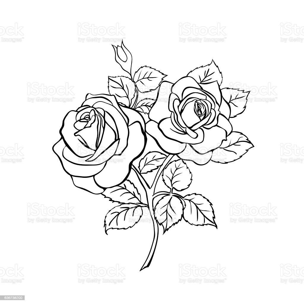 Anime Aesthetic Rose Background