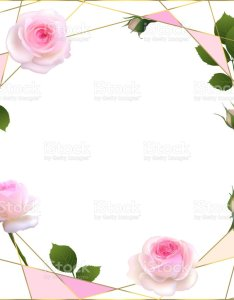also roses floral background flowers flower pattern border petals rh istockphoto