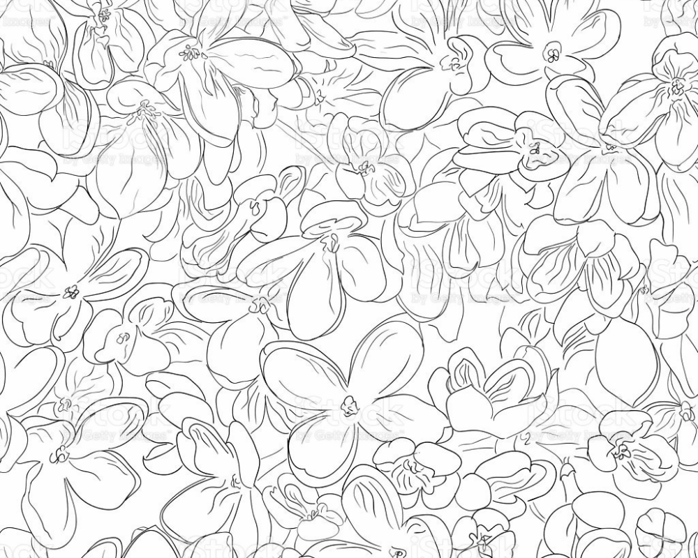 Seamless Floral Pattern Background Outline Black On White ...