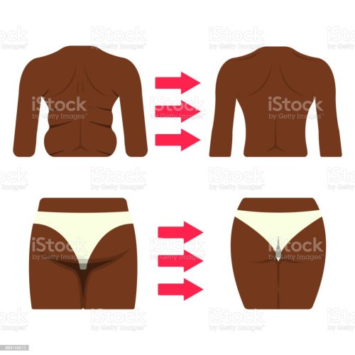 small resolution of set of black woman body part fat and sporty body icon vector illustration label