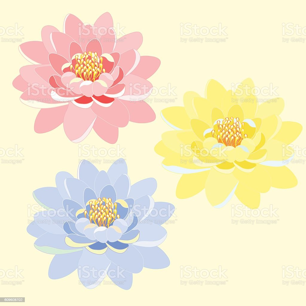 Praying Hands Clip Art Woman Flowers S