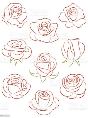 roses vector illustration abstract rose flower single vectors plant