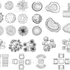 Shrub Graphic Symbols Diagram Dish Tv Antenna Wiring Set Of Tree Top For Architectural Or Landscape