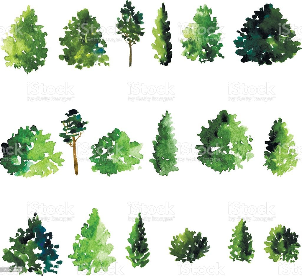 Colc 3d Wallpapers Set Of Trees Drawing By Watercolor Stock Vector Art Amp More