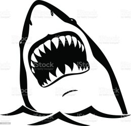 shark vector mouth clip animal illustration silhouette teeth clipart open head sharks background stencils istockphoto illustrations drawing stencil isolated graphics