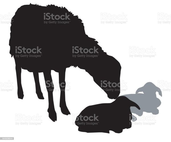 20 Gathering Cattle Silhouette Clip Art Pictures And Ideas On Meta