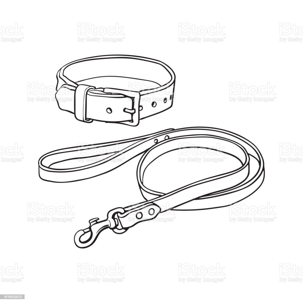Simple Brown Leather Pet Cat Dog Buckle Collar And Leash