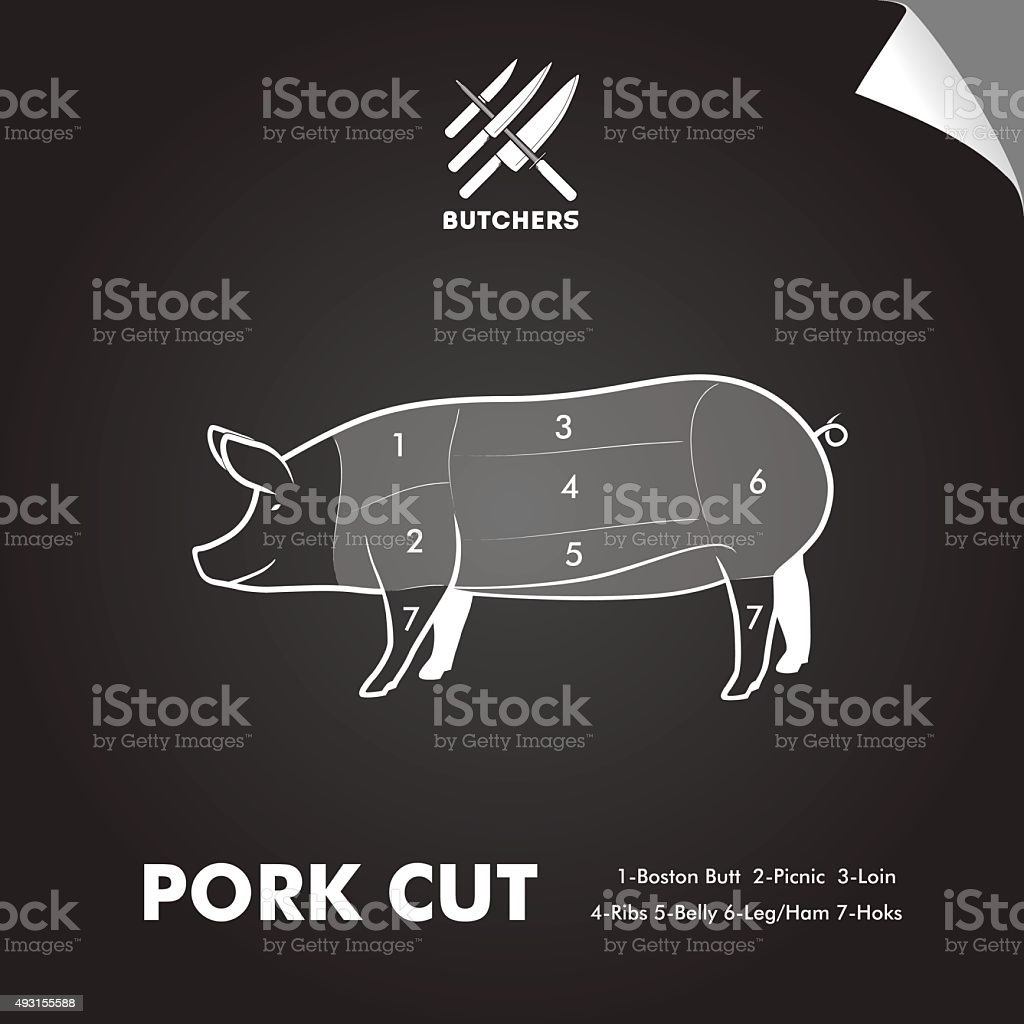 hight resolution of simply meat cut diagram illustration
