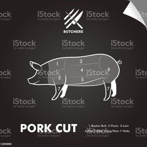 small resolution of simply meat cut diagram illustration