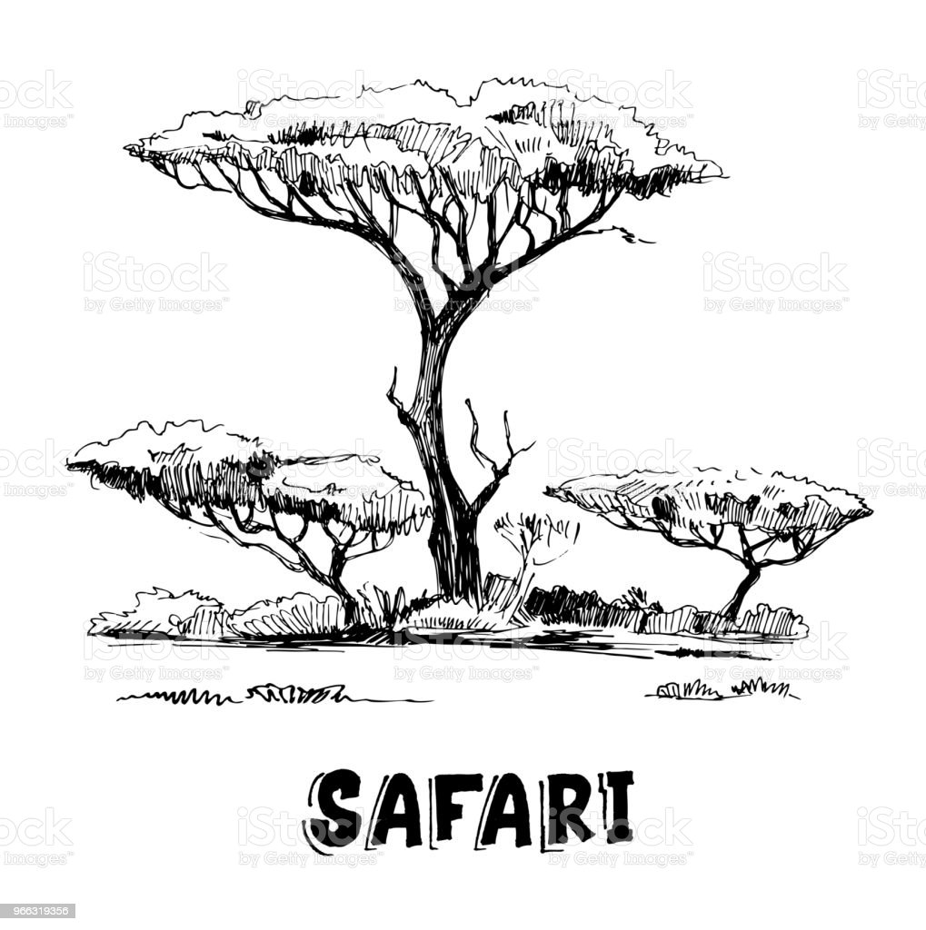 Sketch Of The African Savanna With Plants And Trees Hand