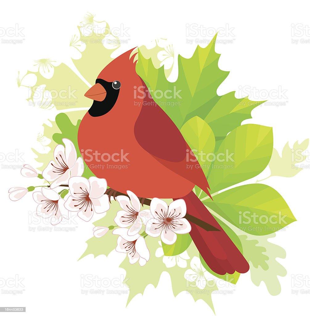 royalty free cardinal flower clip