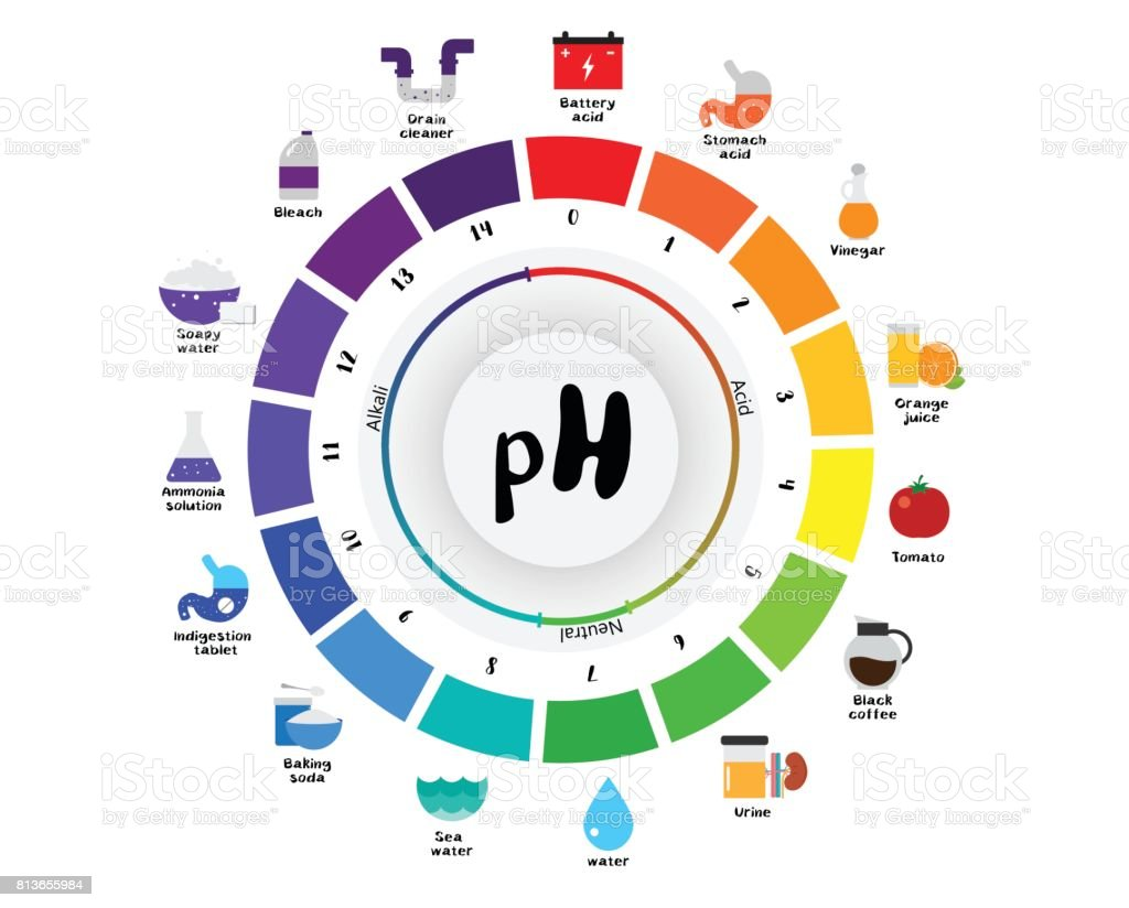 hight resolution of the ph scale universal indicator ph color chart diagram royalty free the ph scale universal