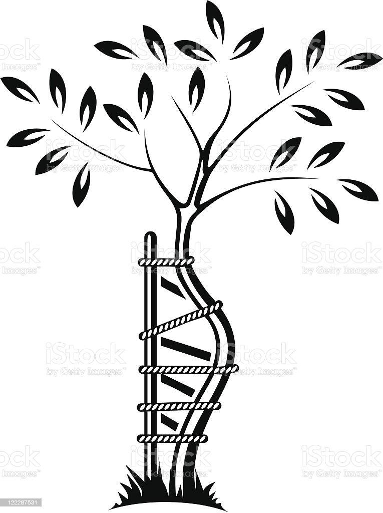 Tree As Symbol Of Orthopedics And Traumatology Stock