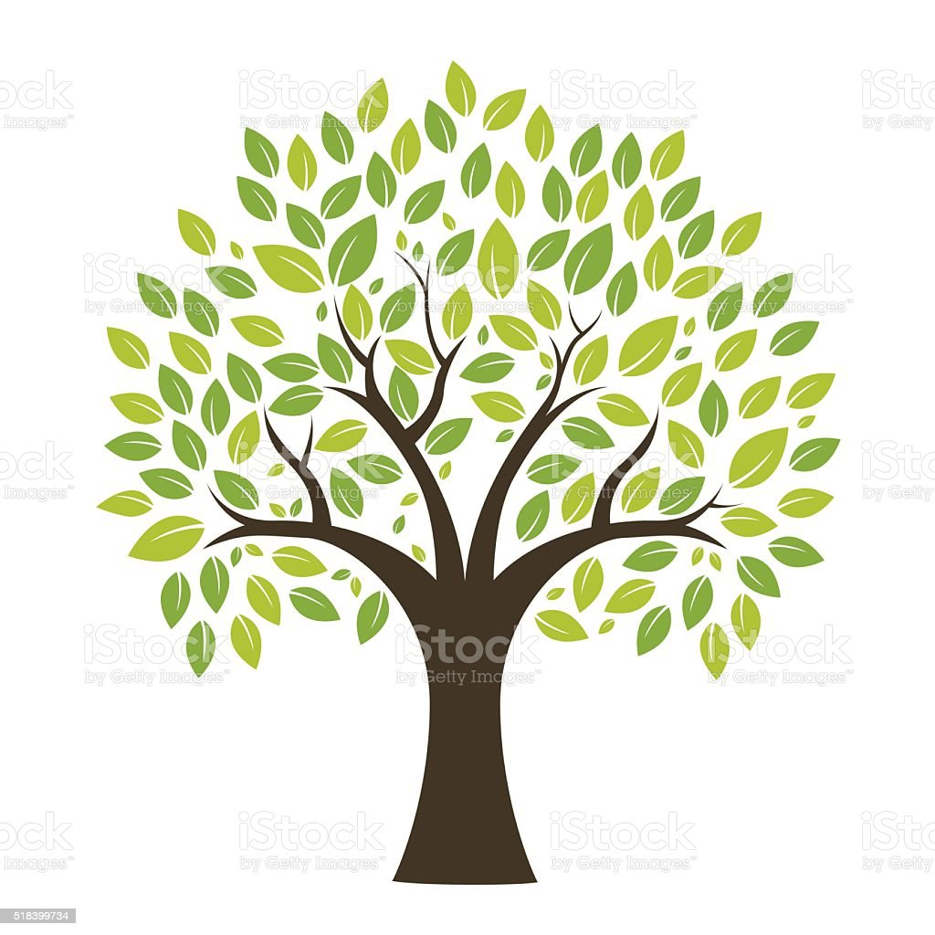 best tree illustrations royalty