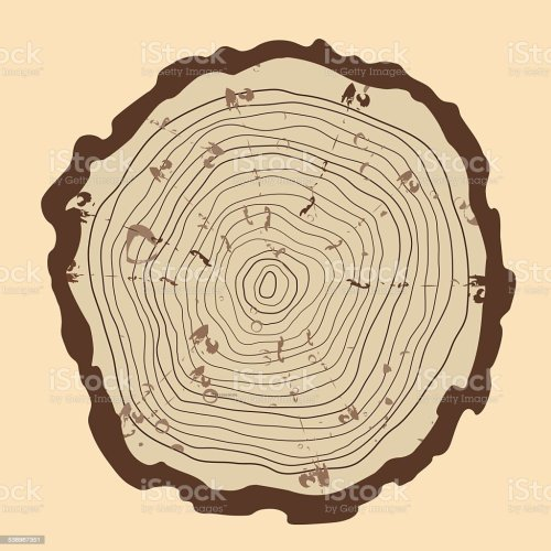 small resolution of tree rings and saw cut tree trunk vintage style royalty free tree rings and