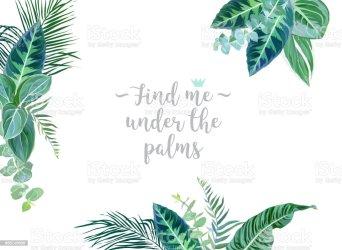 borders leaves emerald vector tropical exotic greenery frame arranged desi palm plants animal illustration clipart clip wildlife paradise illustrations beach