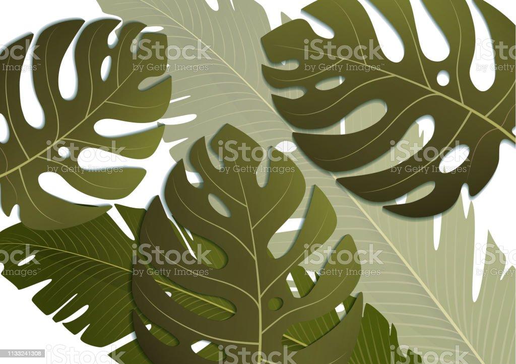 tropical exotic banana leaves