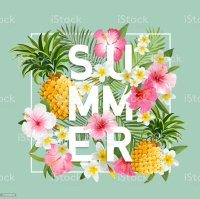 Tropical Flowers And Leaves Background Summer Design ...