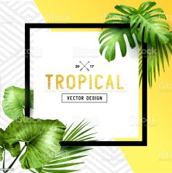 border palm tropical leaf vector illustration frame leaves clip exotic background climate summer gold hawaii illustrations islands glitter pacific event