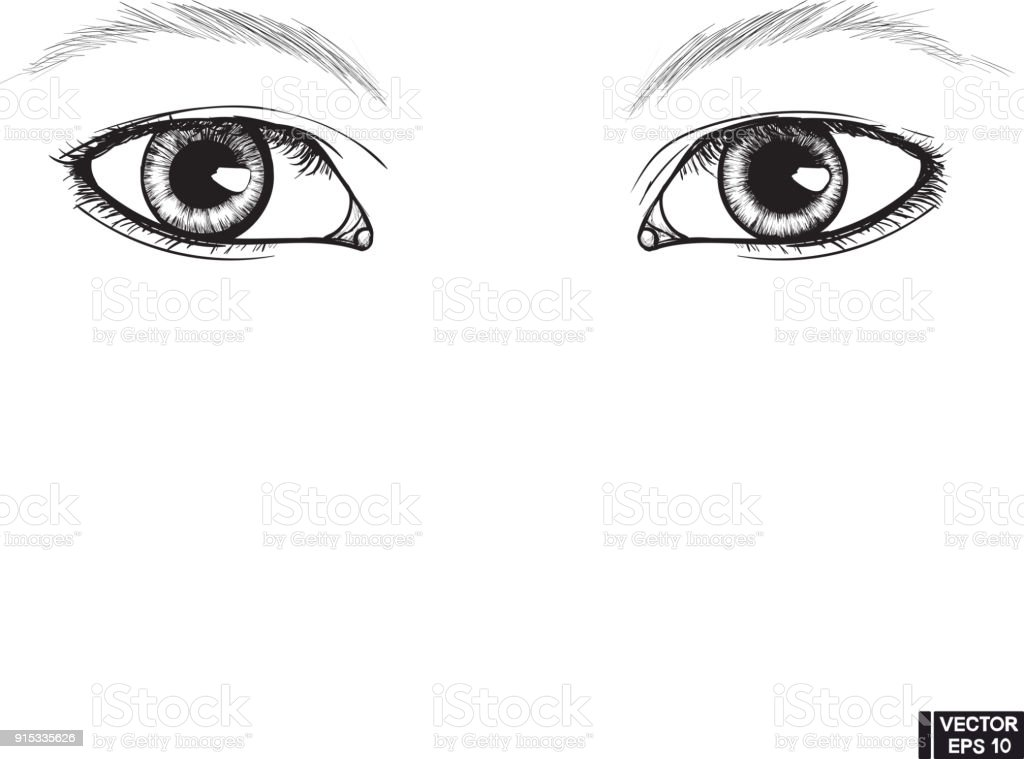 Two Beautiful Female Eyes Sketch Stock Vector Art & More