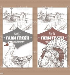 two farm shop labels with farmhouse barn goose and turkey on white royalty [ 1024 x 1024 Pixel ]