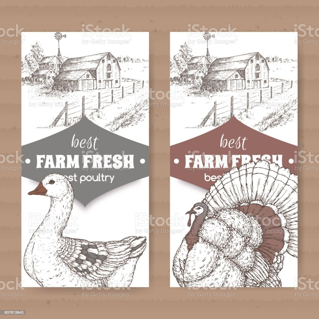 hight resolution of two farm shop labels with farmhouse barn goose and turkey on white royalty