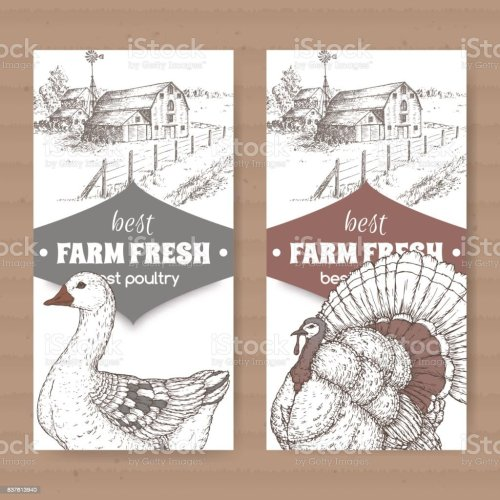 small resolution of two farm shop labels with farmhouse barn goose and turkey on white royalty