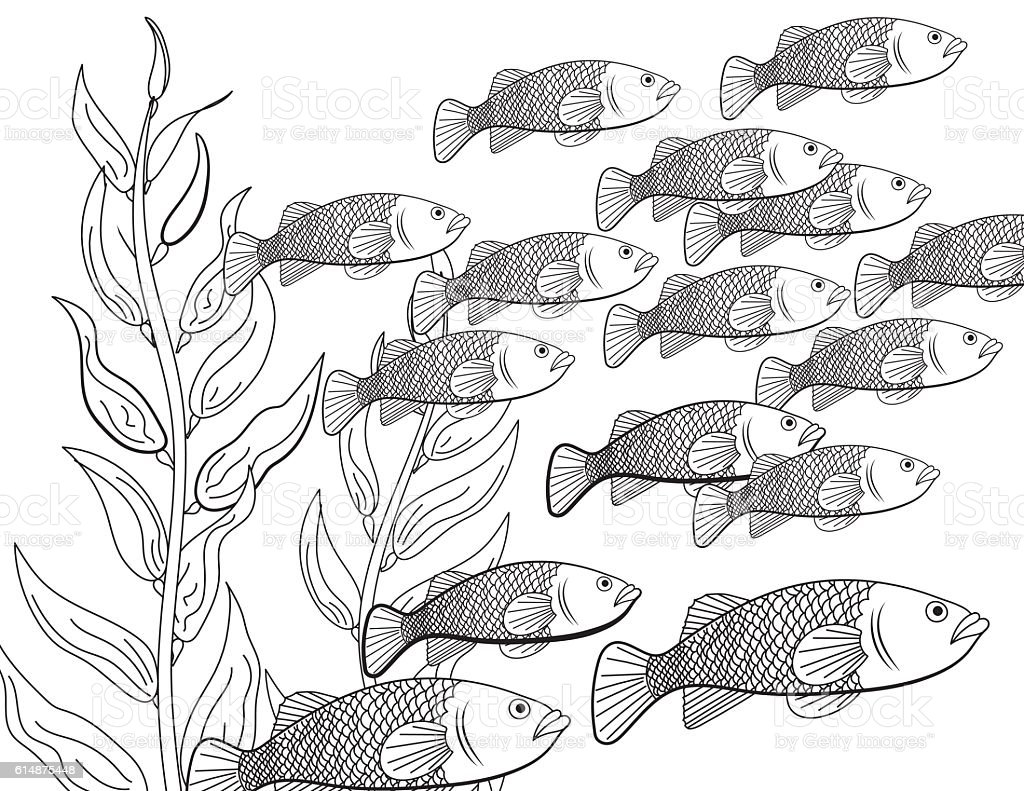 Underwater School Of Fish Adult Coloring Book Page Stock
