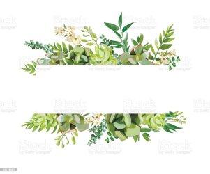 Vector Horizontal Flower Border Clipart